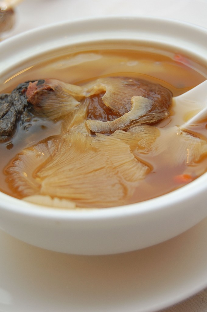 A bowl of shark fin soup. Credit: Creative Commons.