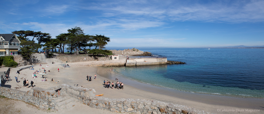 Lover's Cove in Pacific Grove (Click to enlarge).