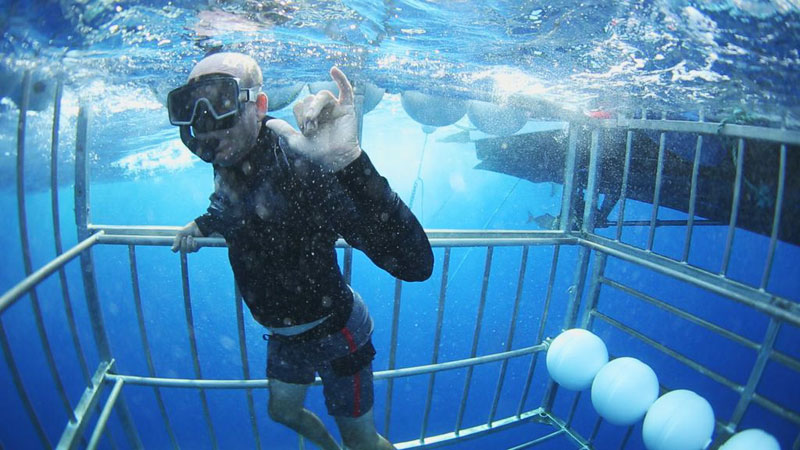 Dr-Sims-Goes-Snorkeling-Hawaii