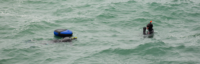 Two abalone divers at Ocean Cove on Saturday