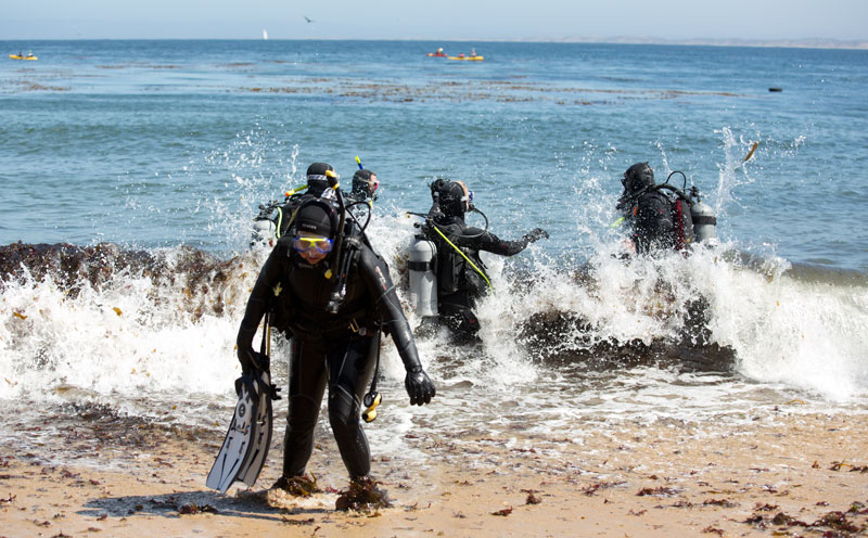 Rough entry: A diver exits the water just before the scouts enter.