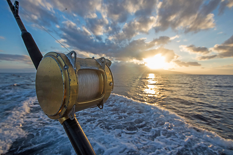 CFG Suspends License of Sportfishing Charter Boat Operator for