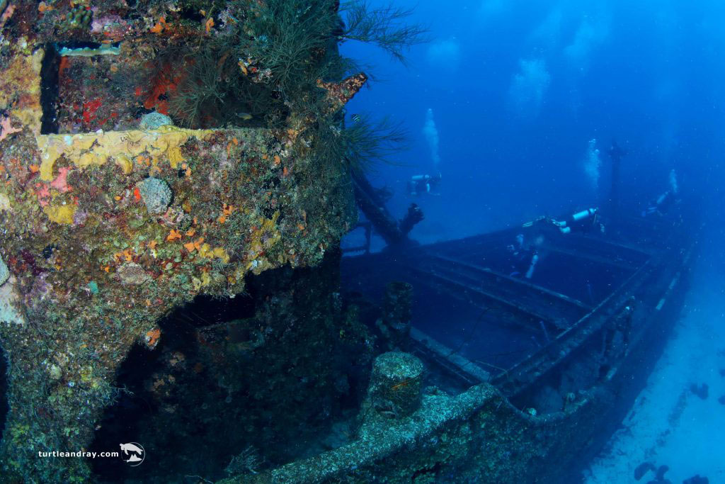 7f24a76616 Diving Into History  Curacao s Iconic SUPERIOR PRODUCER Shipwreck ...
