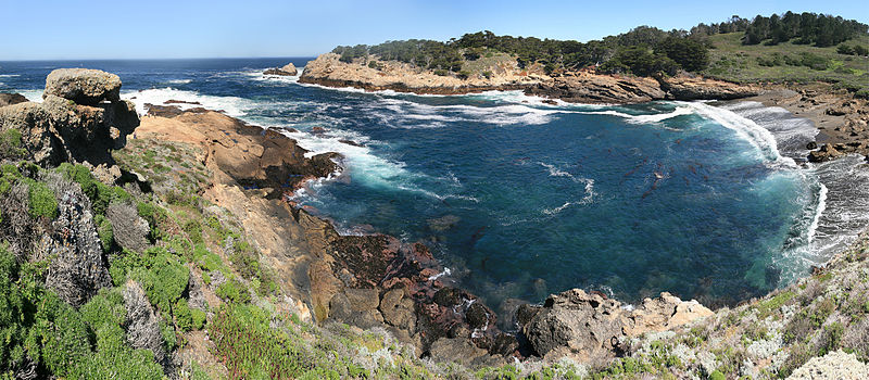 Point_Lobos_17