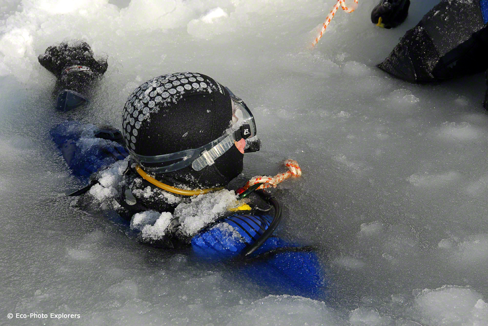 Diver exiting through the hole in the ice surface.