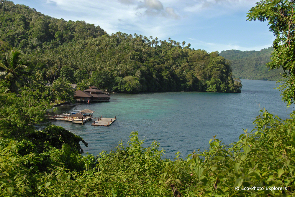 Kungkungan Bay Resort on the Lembeh Straight