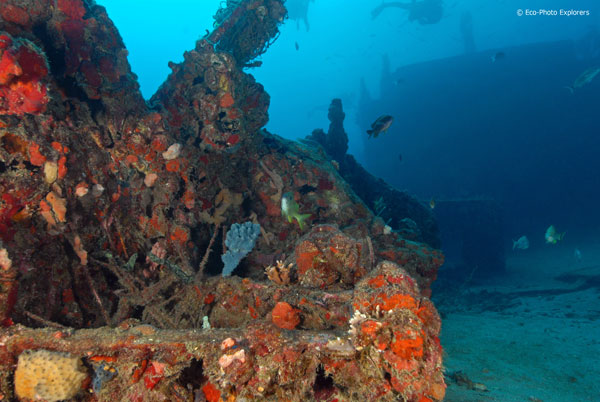 The Golden venture is now an artificial reef.