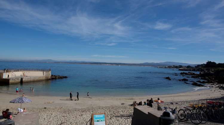 Scuba diving lovers cove monterey