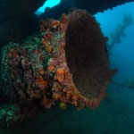 The Antilla wreck offers much wreckage to explore