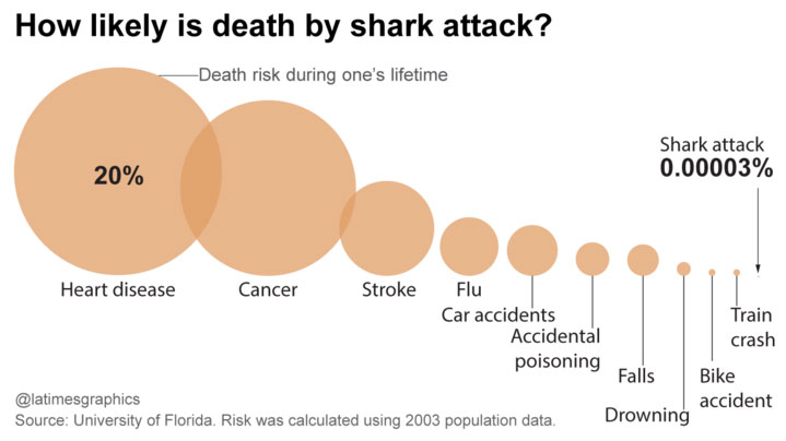 chances of shark attack