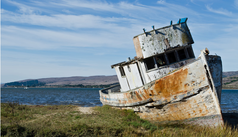 A shipwreck on Tomales Bay in Marin County.