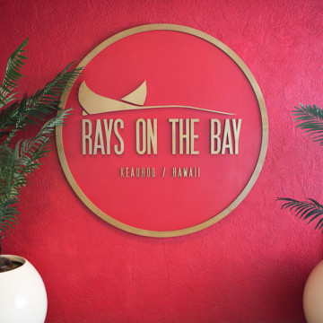 Rays-on-the-bay-298A8796