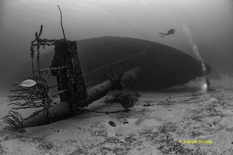 Underwater Photography When The Answer Is Black White - Amazing black white underwater photography