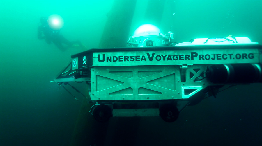 "The Undersea Voyager Project's submarine ""Spots"" navigates around at the ancient trees during descent."