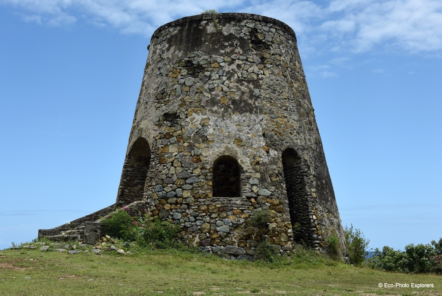 The remains of old sugar mills dot the countryside of St. Croix