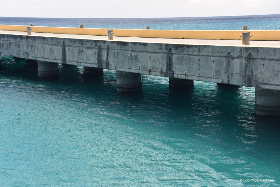 The Fredericksted Pier is one of St. Croix's best dives